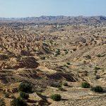 Берберски Тунис
