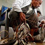 Рибният пазар в Хумт Сук