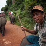 Тропически Лаос